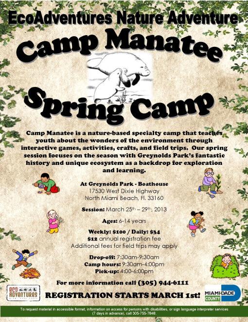 Spring Camp 2013 Flyer