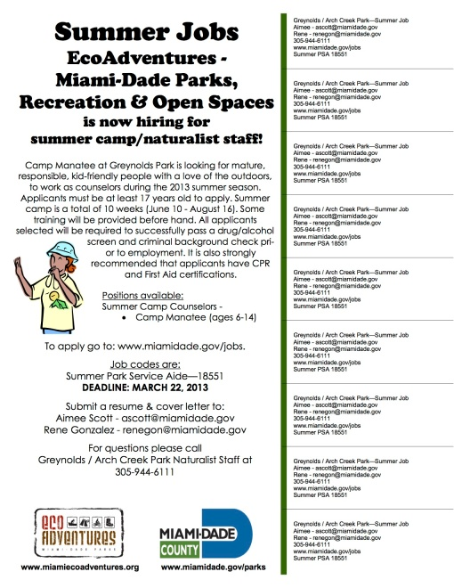 Summer Job Flyer 2013